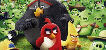 Angry Birds le film – La bonne surprise qu'on n'attendait pas !