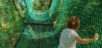 Aventureland : un parc qui mélange accrobranche et jeux d'extérieur