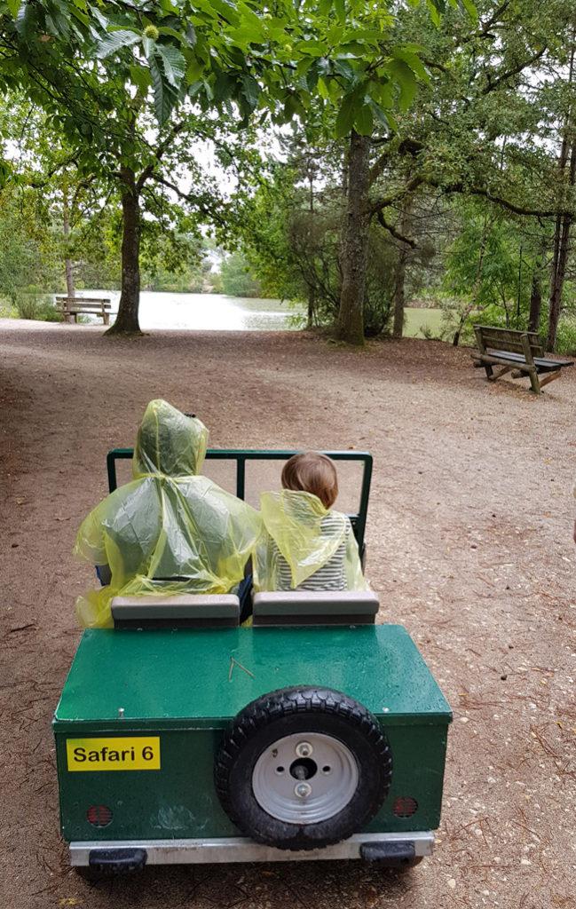 center-parcs-voiture-electrique-enfant-safari