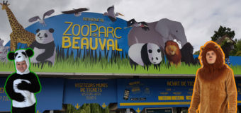 Visite au zoo de Beauval